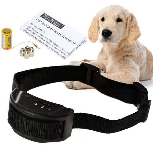 Do Bark Collars Work On Small Dogs
