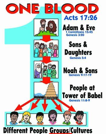 Did we all not come fromone blood acts 17 26 cain s wife who was