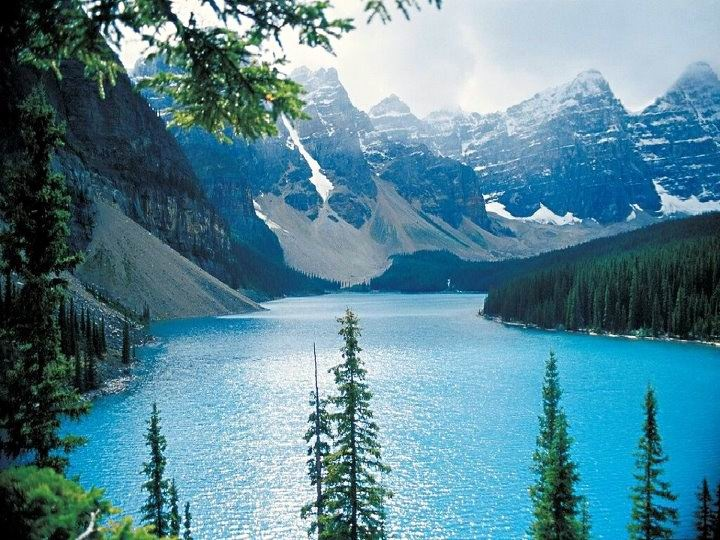 Majestic Nature Pinterest