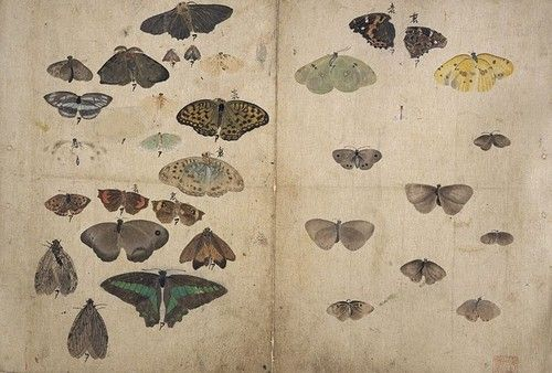 Maruyama Ōkyo, Album of Sketches, 1793