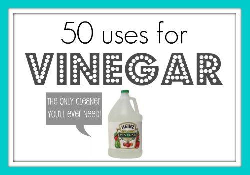 50 uses for vinegar...who knew?
