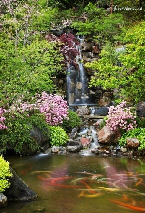 Beautiful koi pond and waterfall gardens ponds for Koi pond waterfall