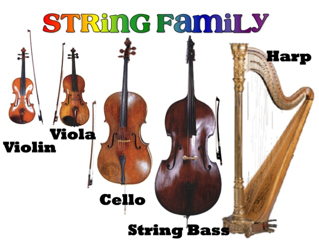 string family - more on website | Instruments of the ...