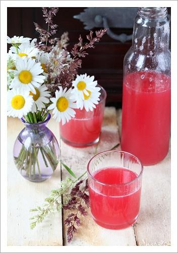 Rhubarb juice | Kui mul oleks kohvik ... | Pinterest