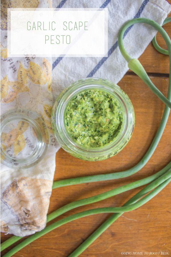 vegan garlic scape pesto | Grub | Pinterest