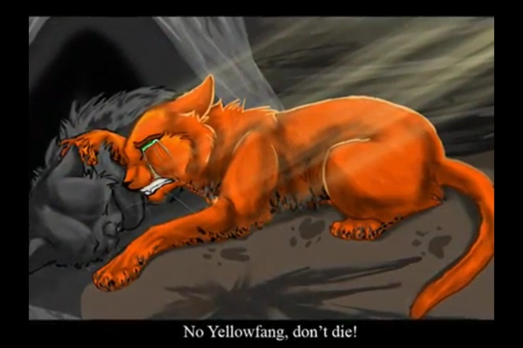 Yellowfang And Fireheart Pin by Dorothy Winslet...