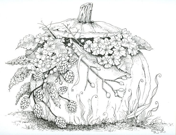 Pompoen pompoen pinterest for Pumpkin coloring pages for adults