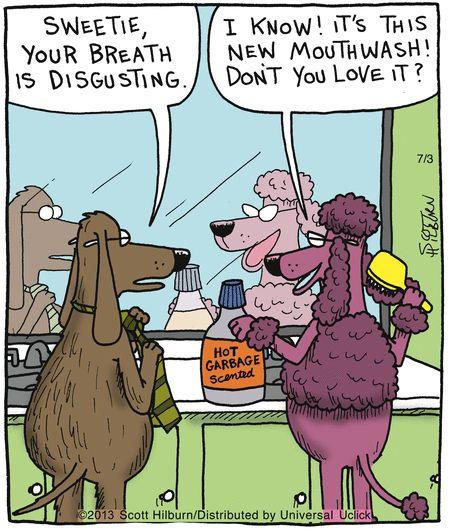 Cartoon animal jokes - photo#4