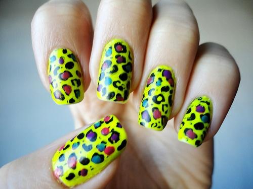 Multicoloured leopard