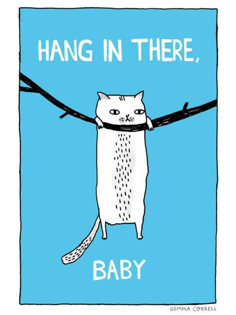 Hang in there baby!  #quotes #design #art