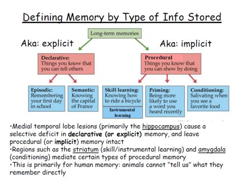 an overview of the different types of long term memory Chapter 6: learning, memory and on common features of different theories three types of memory activation of long-term memory plays a role in.