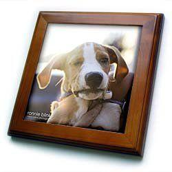 """... Cherry Finish. 3 months old puppy blinks eye Framed Tile is 8"""" x 8"""