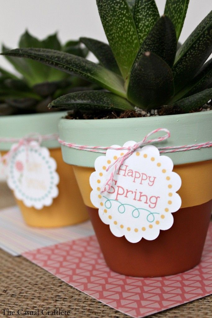 Mint and Mustard Painted Succulent Pots {plus} FREE Printable Happy Spring Tags