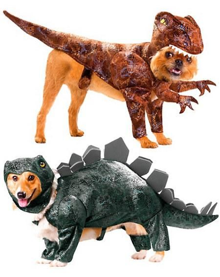 dinosaur dog costumes....this would be so funny to do!!!