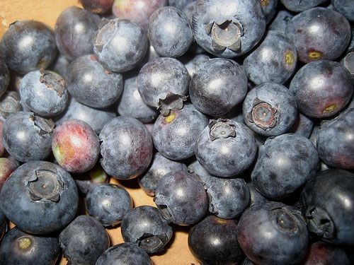 Blueberry Ketchup | Extras Extras Eat All About Em | Pinterest