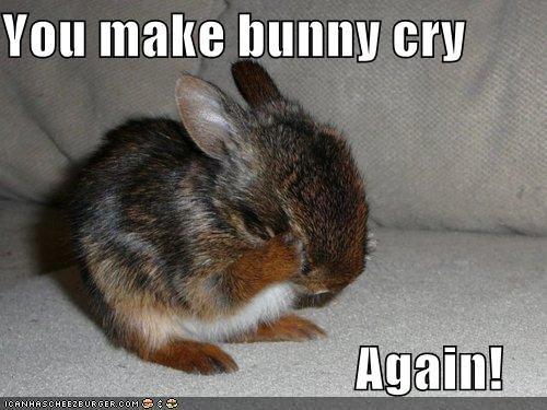 You make bunny cry... again | Cute | Pinterest