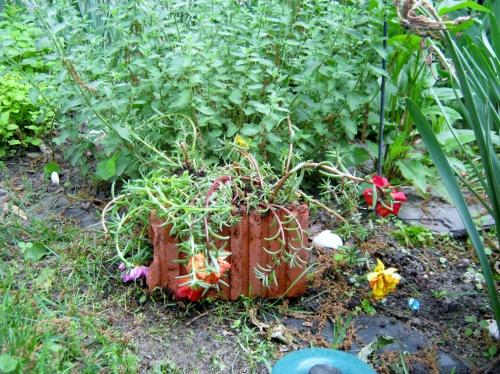Portuluca Planter in salvaged brick