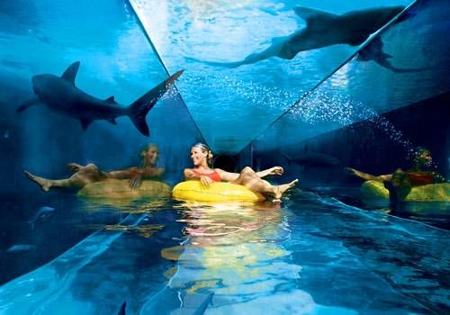 Atlantis: Dubai's underwater hotel  A boutique hotel it ain't  The 1,539-room, $1.8 billion megaplex is situated on the The Palm, an artficial sand island shaped like a palm tree.