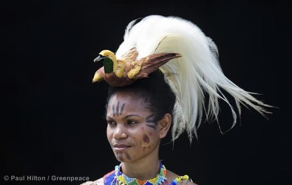 Papuan traditional dancer