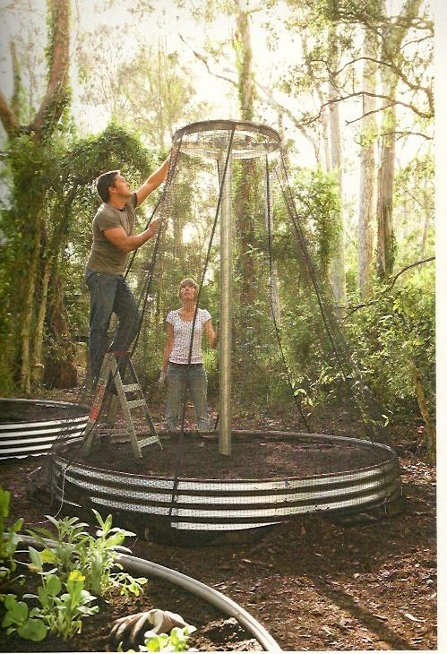 Pin by chapters scenes on edible garden design pinterest for Jamie durie landscape design
