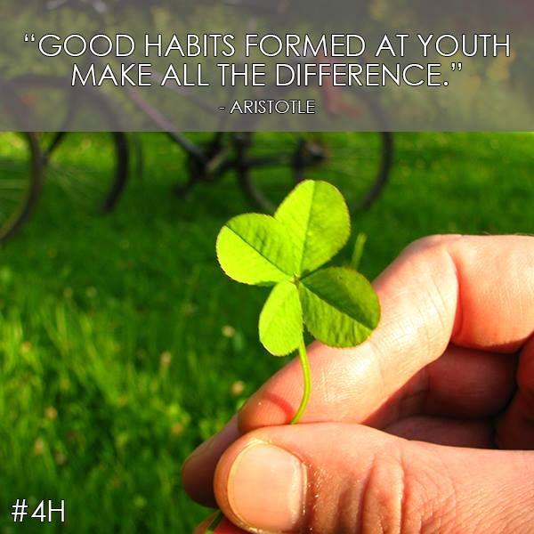 youth deveopment | 4-H | Pinterest: http://pinterest.com/pin/165648092518117298/
