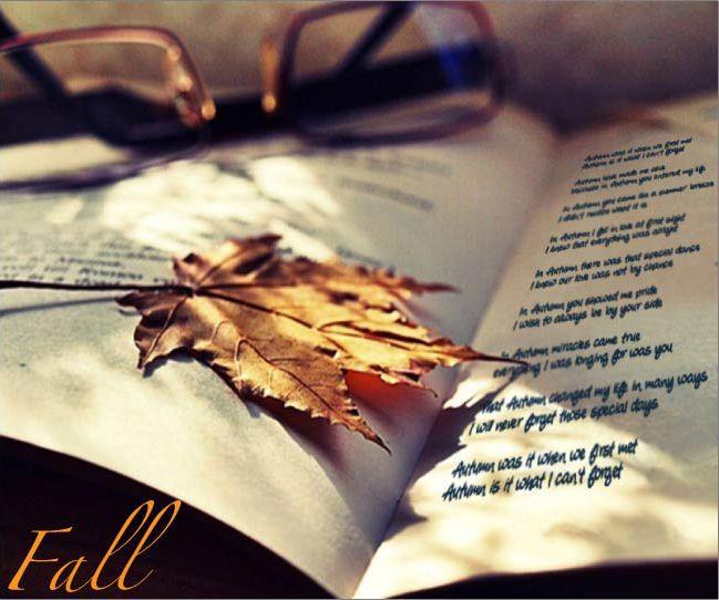 Fall.........