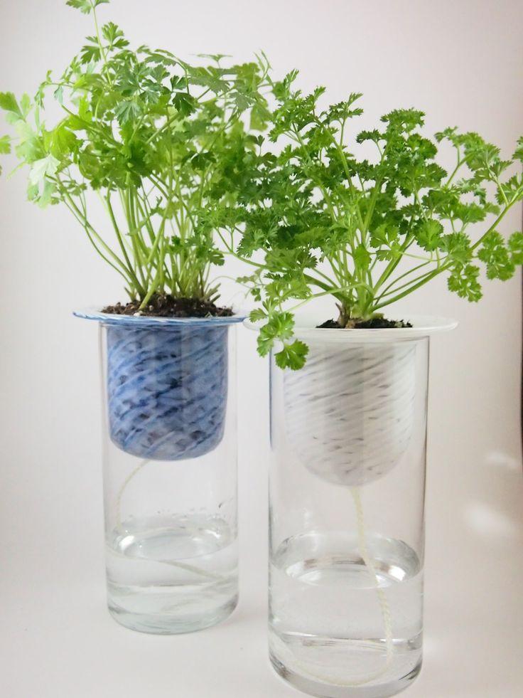 Pin By Patty Huhmann On Gardening Pinterest