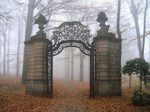 Spooky gate entrance | Dream Livin | Pinterest