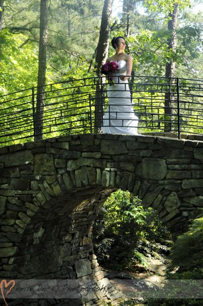 Pin By Garvan Woodland Gardens On Garvan Weddings Pinterest