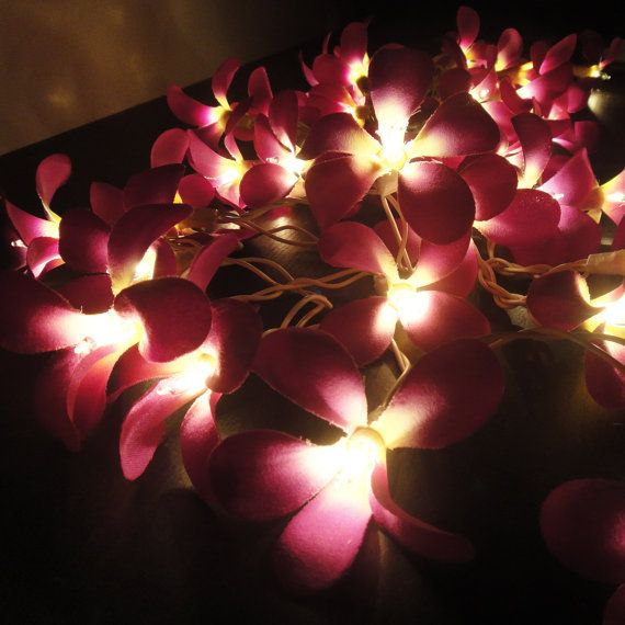 Purple Flower String Lights : 35 Flowers Purple Frangipani Fairy Lights String Home Accent Floral P?