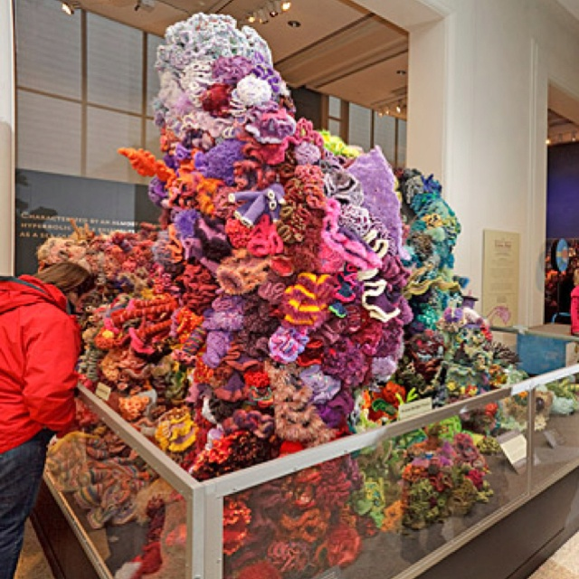 Smithsonian museum of natural history crocheted coral reef