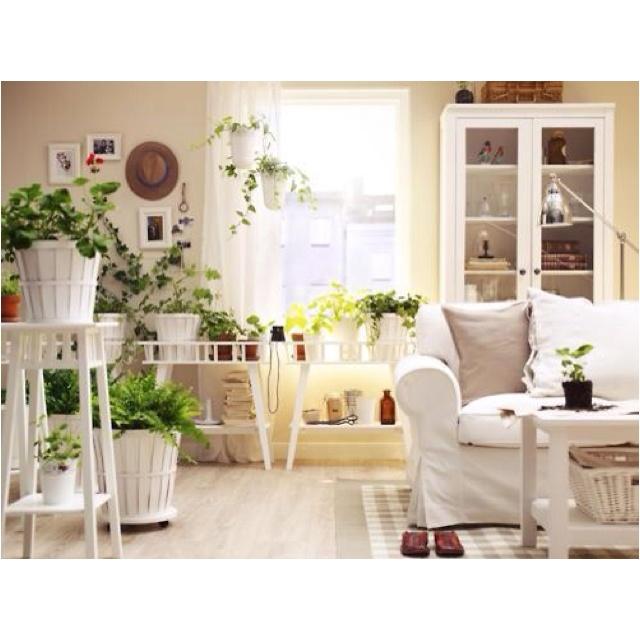 GardensIndoor Apartment Garden Ideas