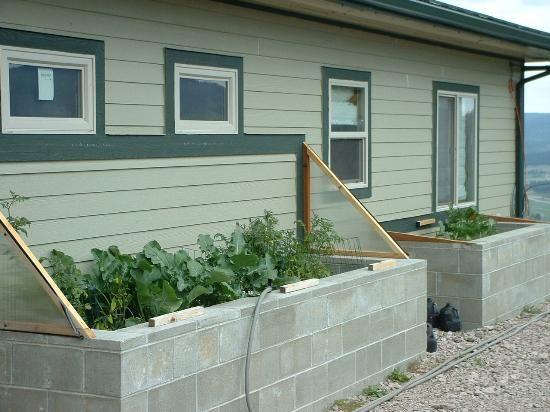 cinder block grow boxes