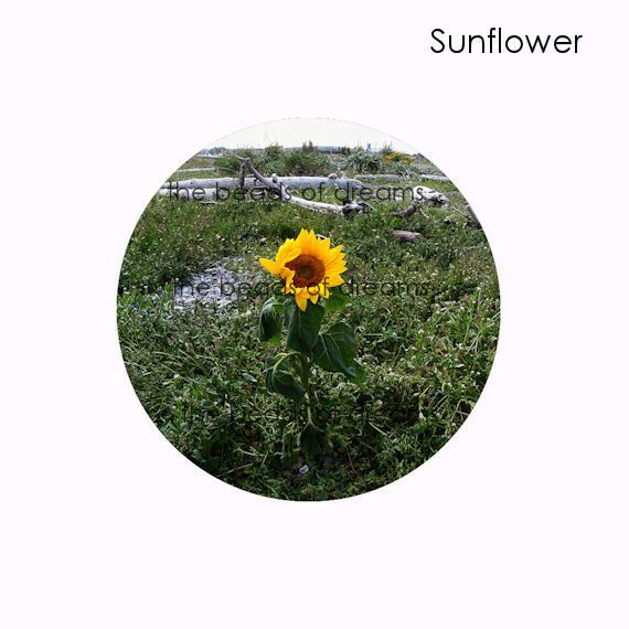 Beads and Jewelry supplies - The Beads of Dreams - Sunflower ...