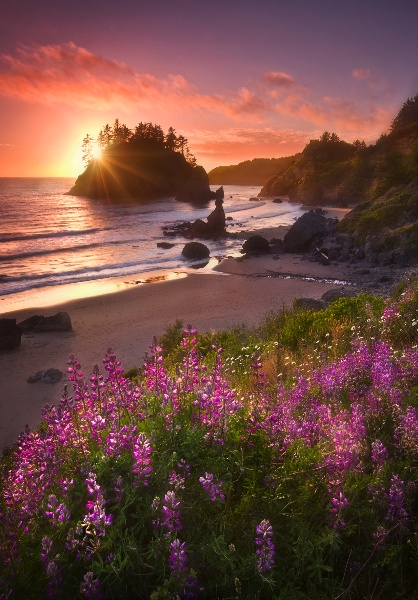 Northern ca at its most beautiful favorite places for Pretty beaches in california