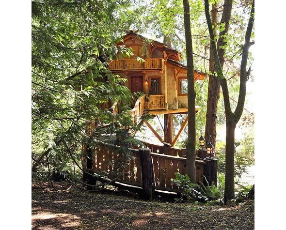 Tree House Home Dreamed Home Pinterest