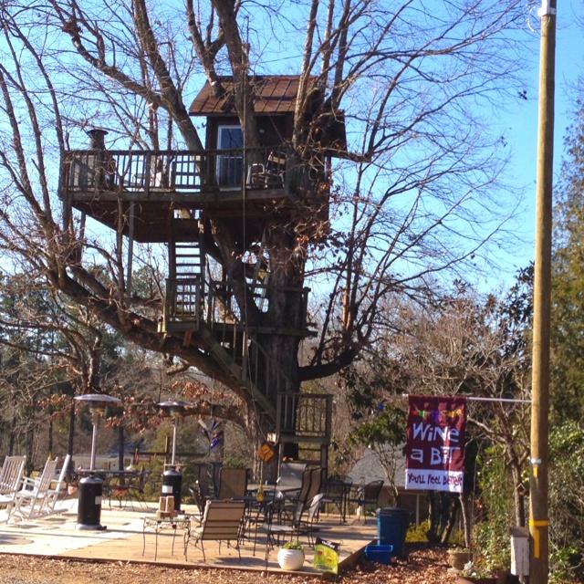 Treehouse Vineyard Tours