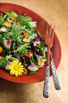 Salad with edible flowers lw flowers pinterest