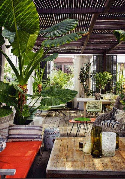 covered wooden deck and tropical plants
