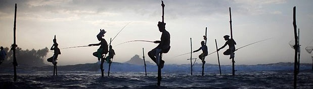 Image: Fishermen wait to catch fish as they sit atop stilts in Ahangama, south of Colombo, Sri Lanka (© Carlos Barria/Reuters)