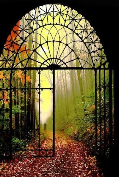 Beautiful view through elegant wrought iron gates