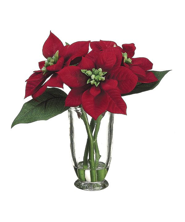 Poinsettia vase arrangement for Poinsettia arrangements