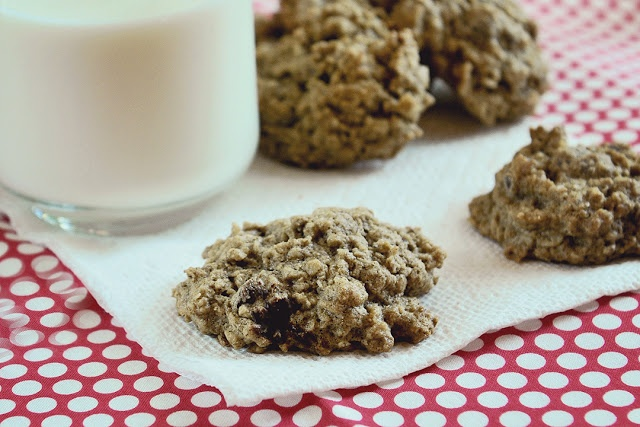 GLUTEN FREE OATMEAL CHOCOLATE CHIP COOKIES and Hurricane Irene