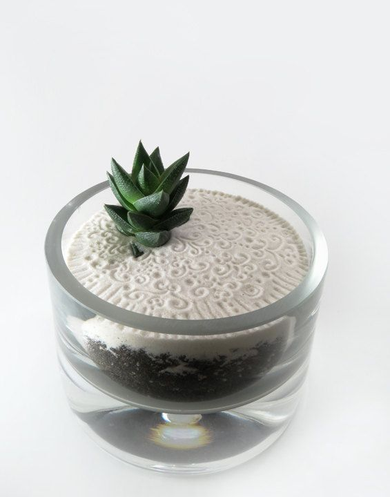 Mini zen garden ii for Jardin zen miniature