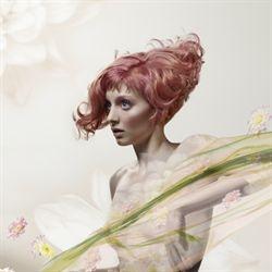 pastel hair do