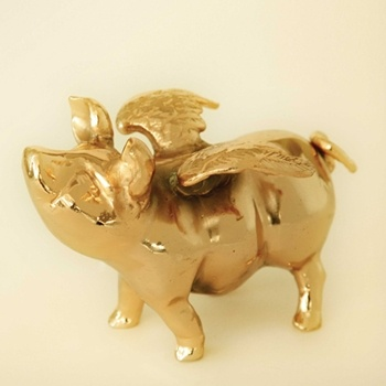 Flying Piggy Bank Images Frompo 1