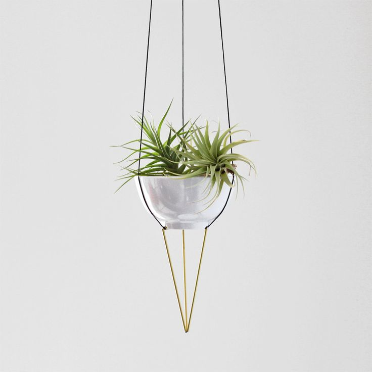 plant hanger no. 2 - hanging planter with bowl - macrame planter ...