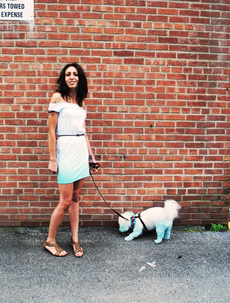 Ombre Dress & Matching Dog