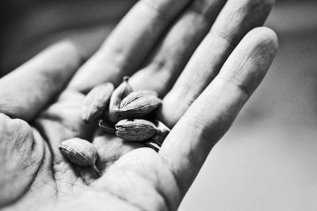 Cardamom Caramel Palmiers Recipe — Dishmaps