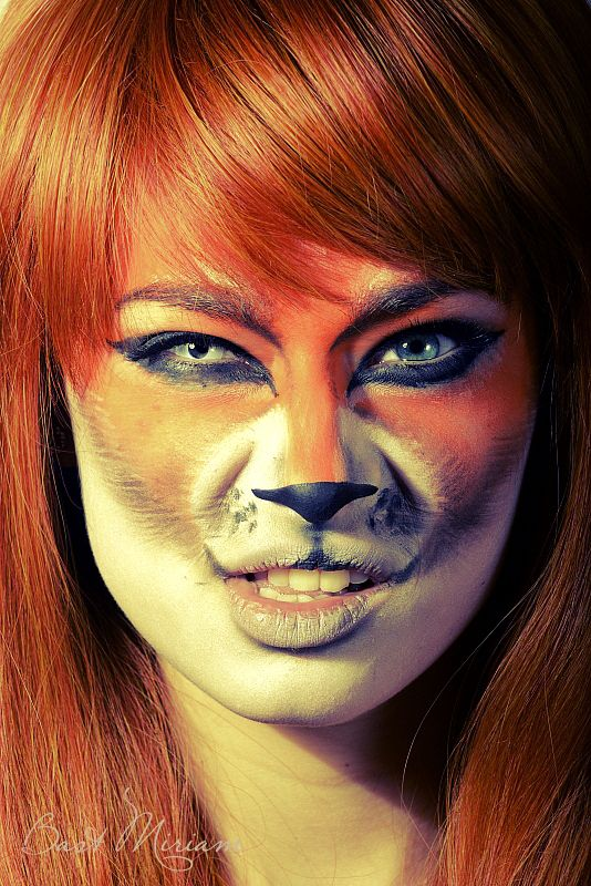 Crazy Lady Fox By MiriamBast FACE PAINT Pinterest